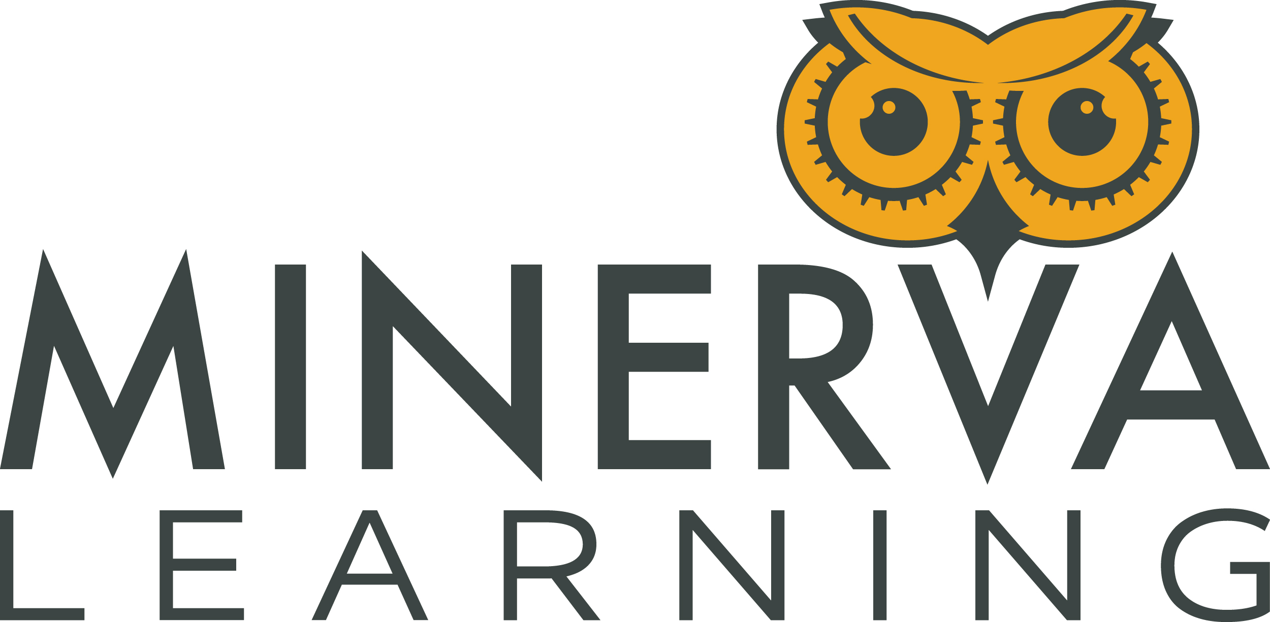 Minerva Learning Teaching Resources